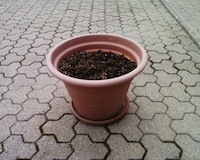A plantless pot.